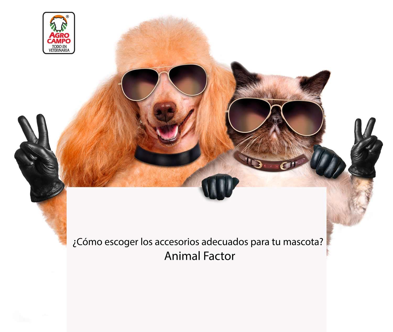 accesorios-para-mascotas-animal-factor