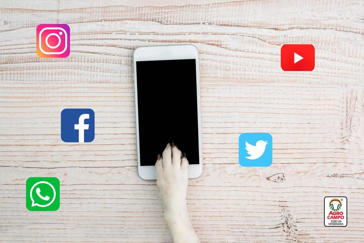 redes-sociales-agrocampo
