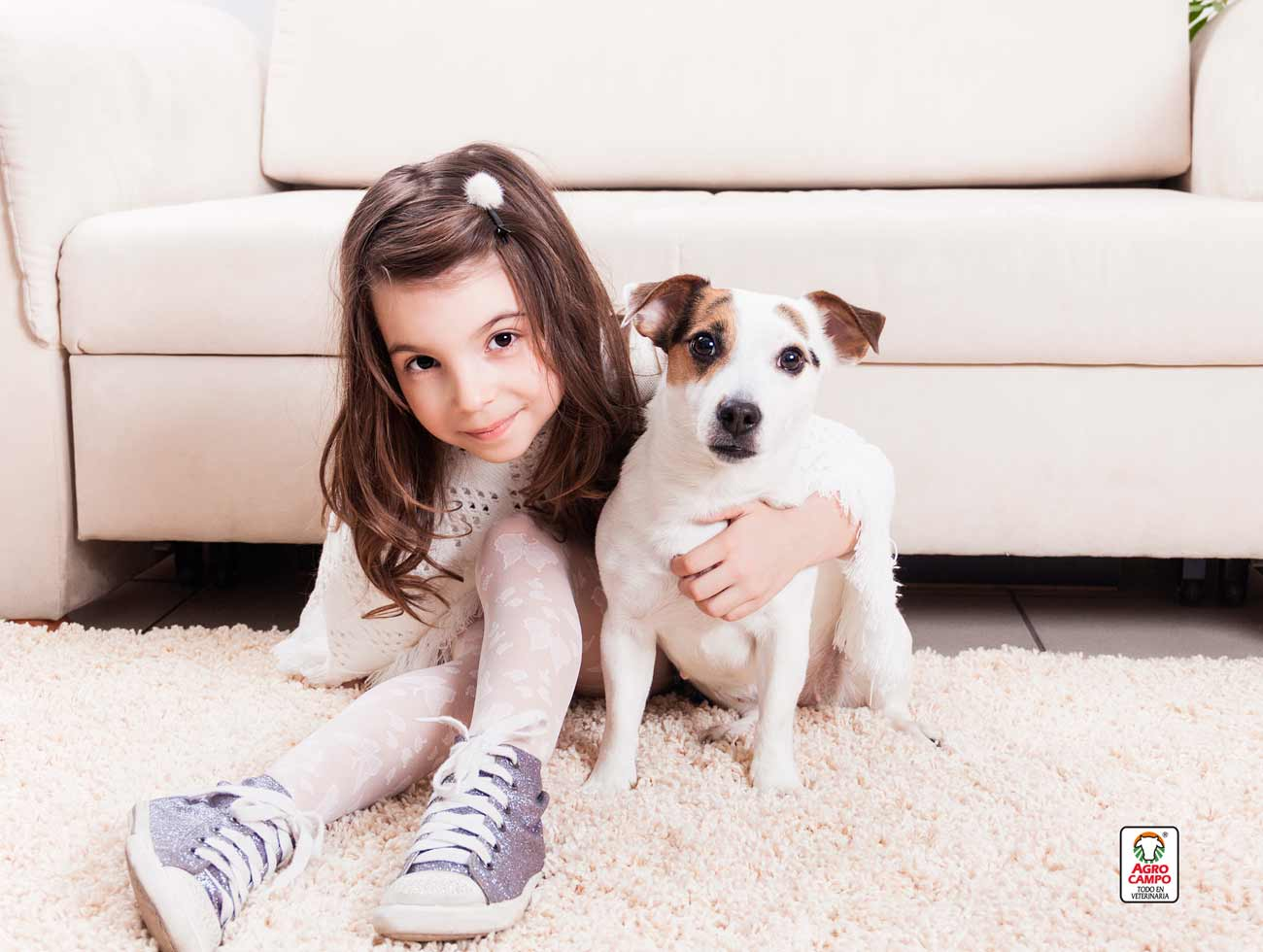 jack-russell-perro-caracteristicas